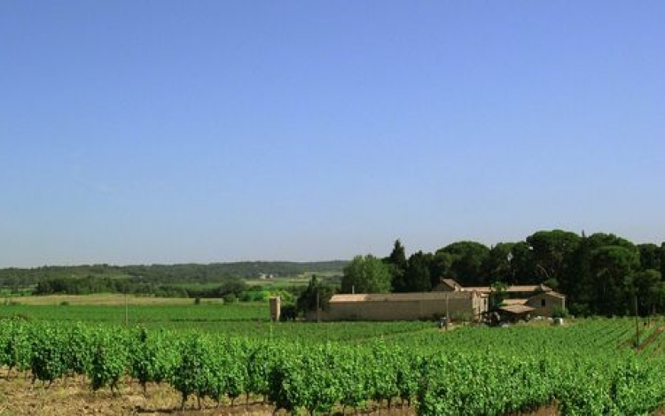 Domaine%20from%20plateau