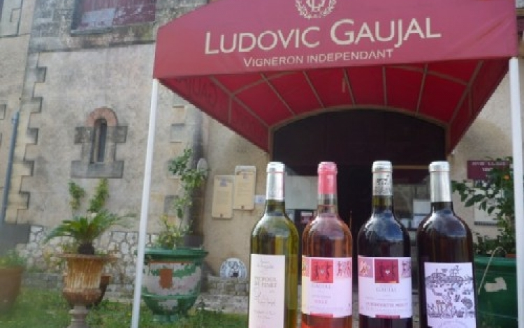 Domaine Ludovic Gaujal Pinet 500x300